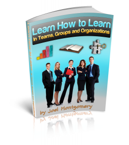 Learn How to Learn--In Teams, Groups and Organizations-eBook Cover